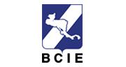bcie_logo